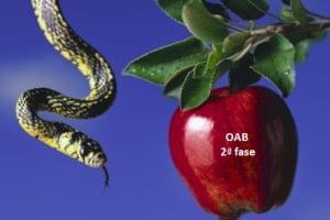 Os 7 pecados capitais da prova subjetiva
