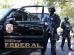 Regimento interno da Polícia federal