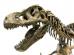 Montando corretamente o esqueleto da peça prática da OAB